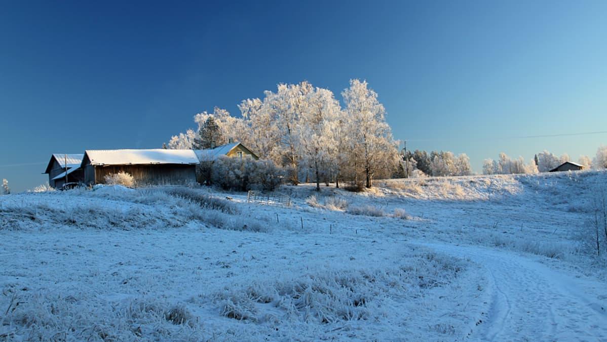 Vanha maatalo talvipakkasella.