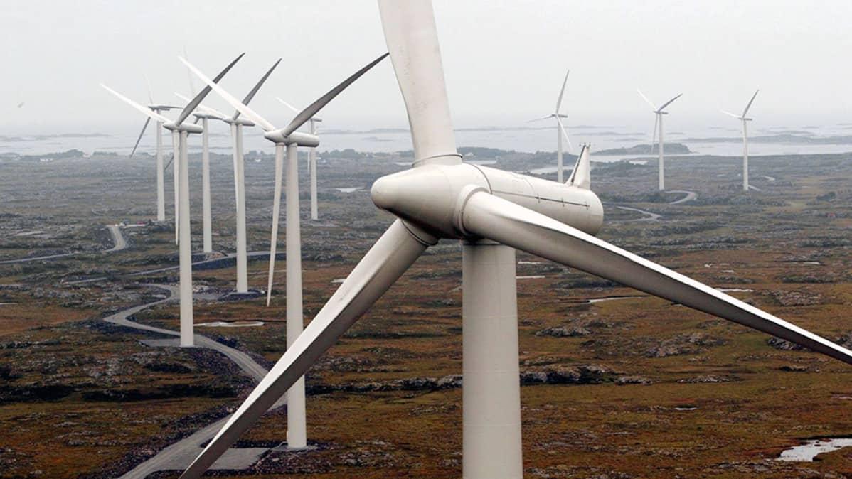 Norjalainen tuulivoimapuisto.