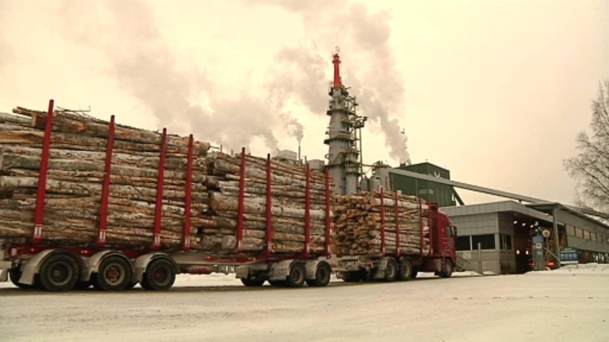 Äänekosken tehtaat nielevät puuta suuria määriä.
