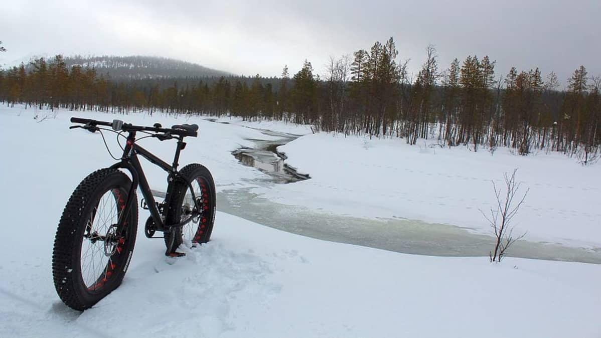 Läskipyörän neljän tuuman renkaat kannattavat lumessa lumikenkien tapaan.