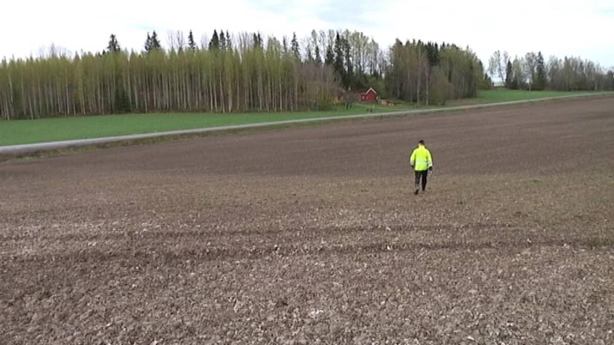 Aapo Ylä-Sulkava pellollaan Kärkölässä