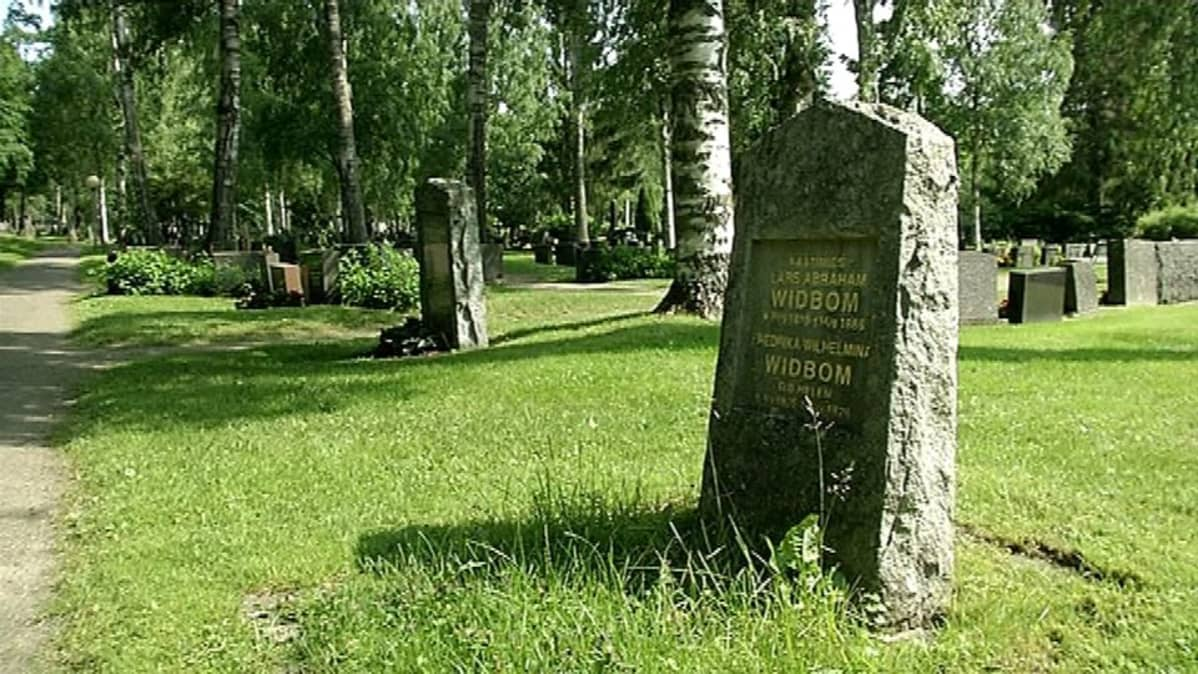 Suuria koivuja kasvaa hautausmaalla.