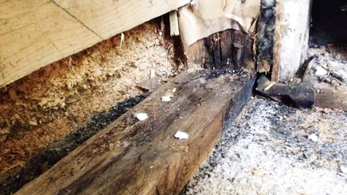 Kosteusvaurioita ja mikrobikasvustoa löytyy usein sisärakenteista etenkin yli 40-vuotiaissa omakotitaloissa.