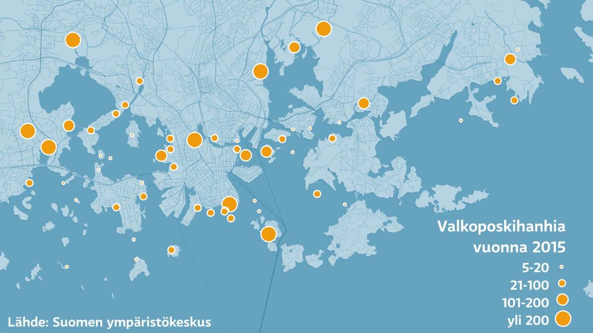 Valkoposkihanhien levinneisyys kartalla pääkaupunkiseudulla.