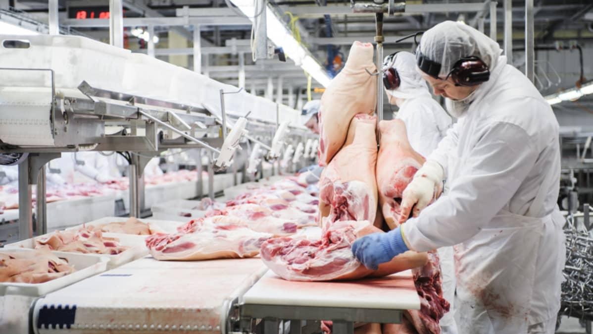 HKScanin Forssan tuotantolaitoksella lihanleikkausta