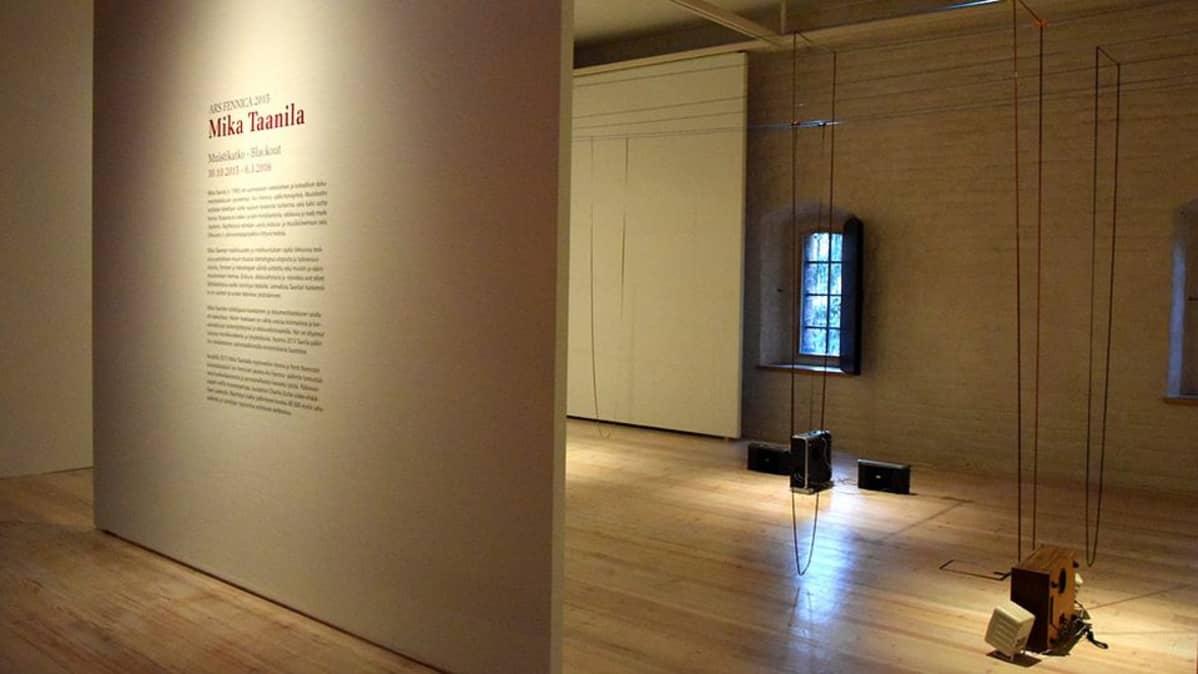 Mika Taanilan näyttely Hämeenlinnan Taidemuseossa