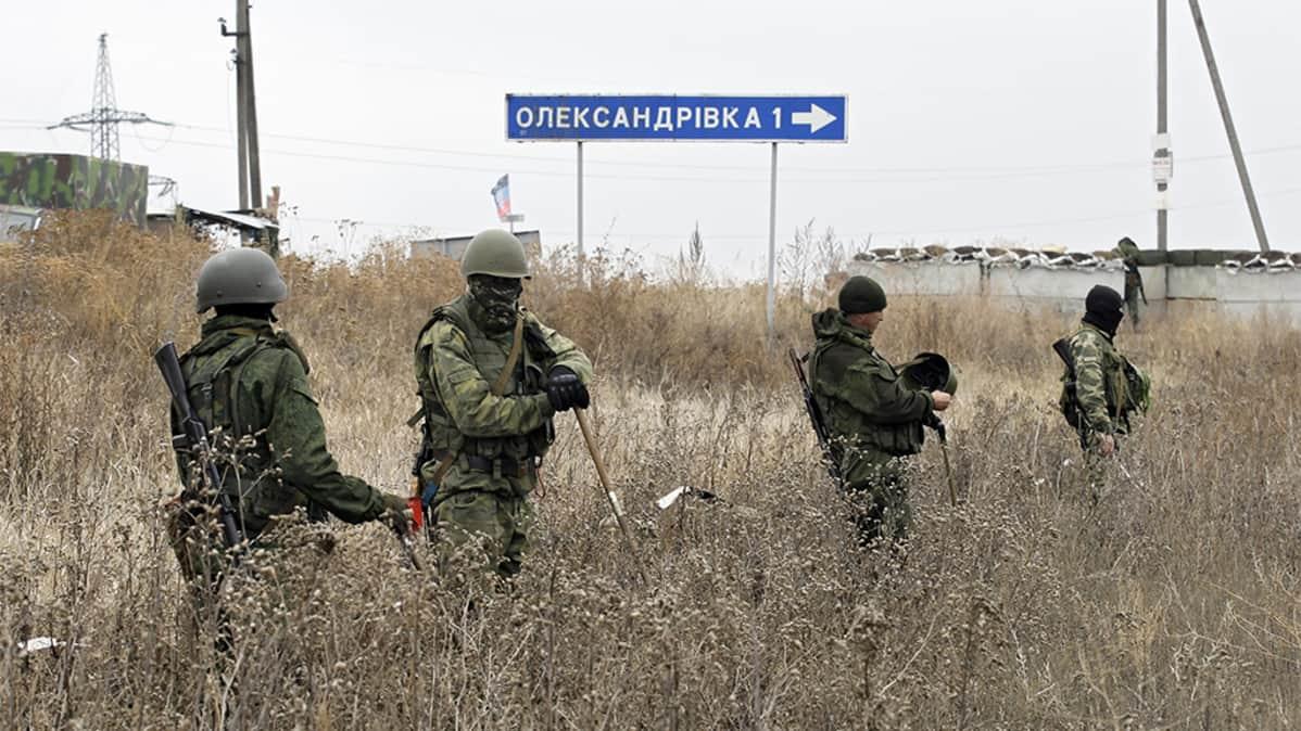 Sotilaita ruskistuneessa heinikossa.