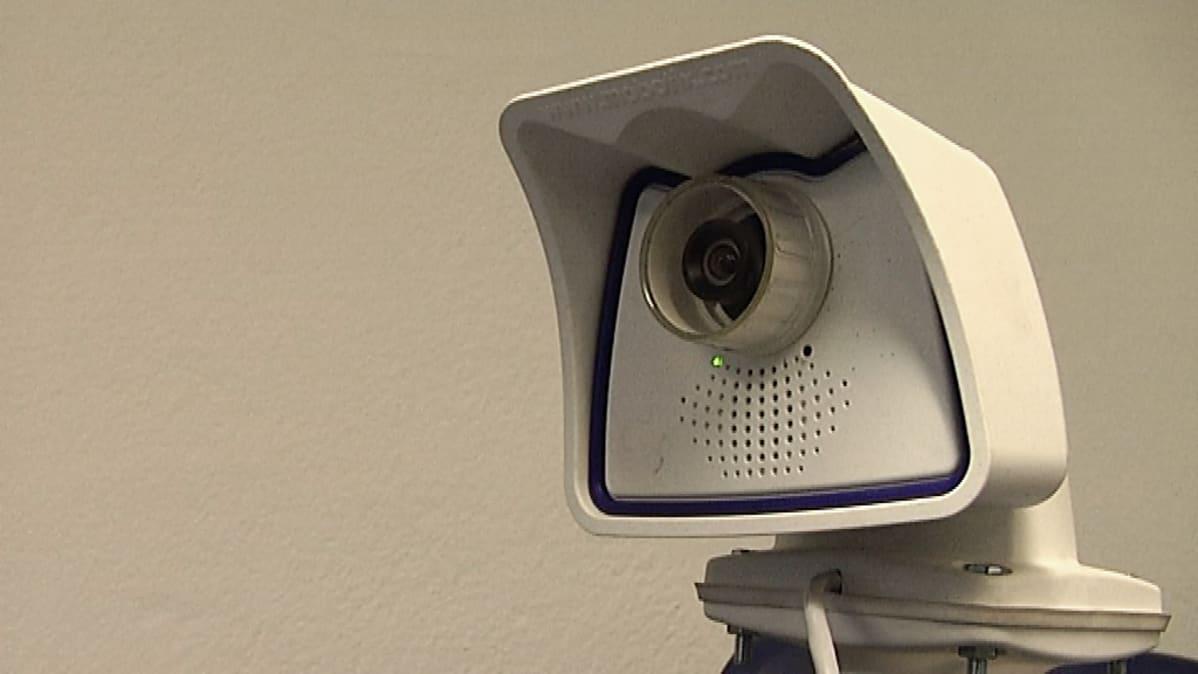 Vielä valkoinen kamera tullaan naamioimaan sellaiseksi, ettei merikotka huomaisi sen olemassaoloa pesäpuussaan.