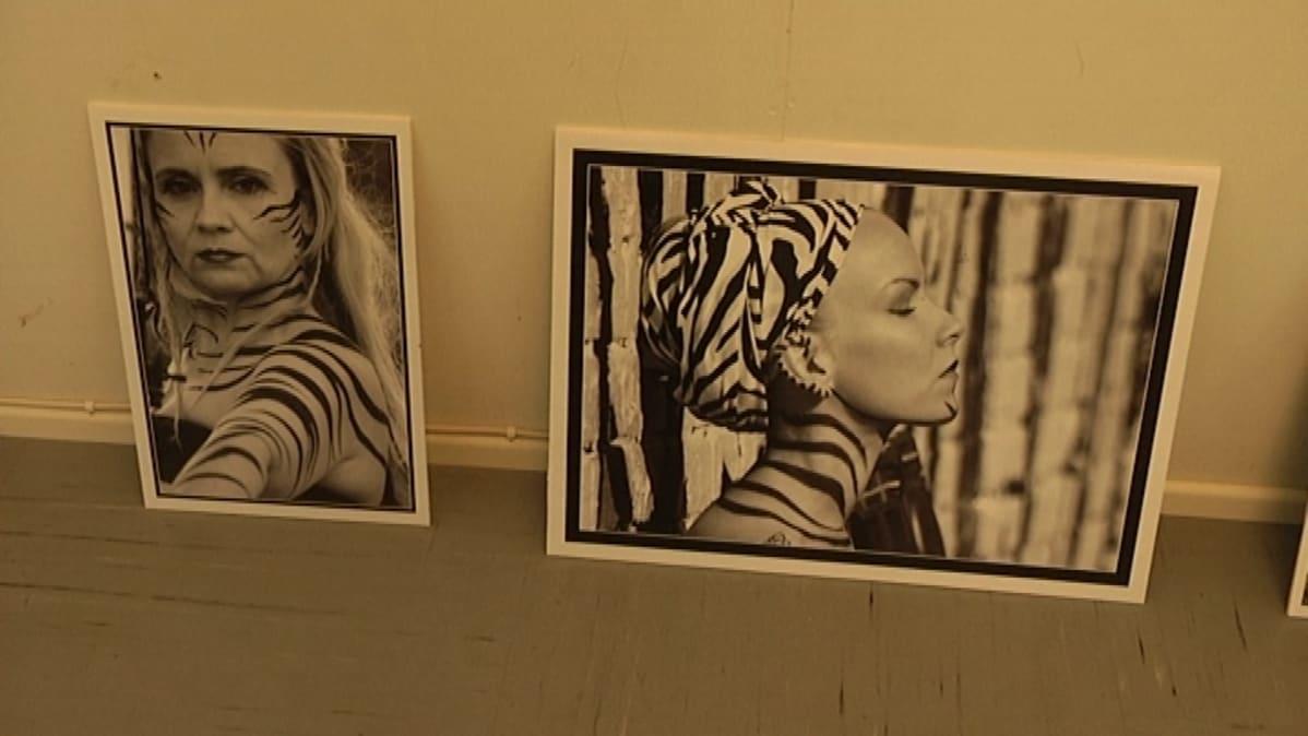 valokuvia naisista seeprakuosissa