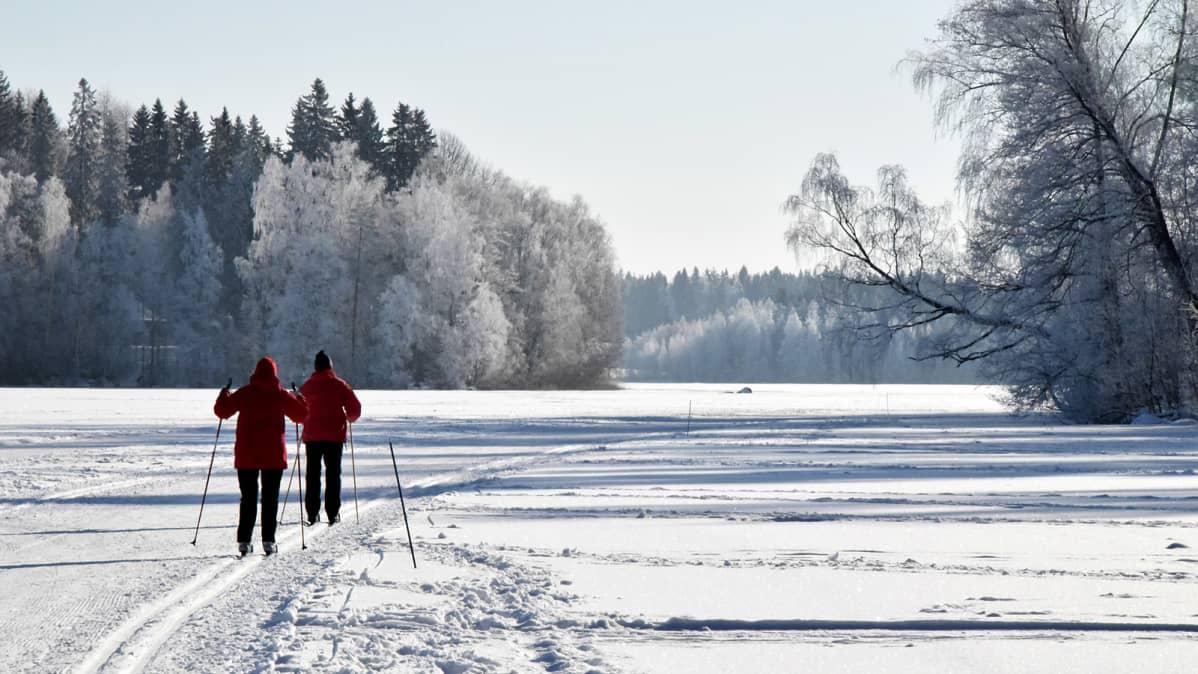 Kaksi hiihtäjää ladulla järven jäällä