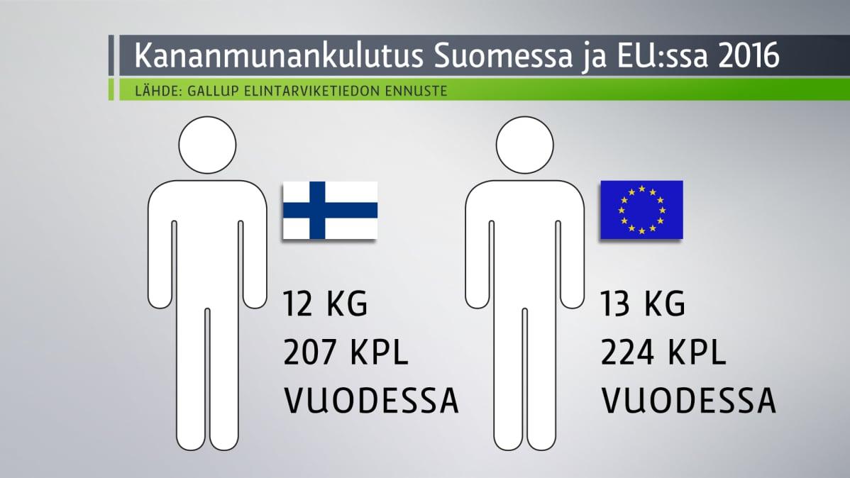 Grafiikka kertoo kananmunantuotannosta Suomessa.
