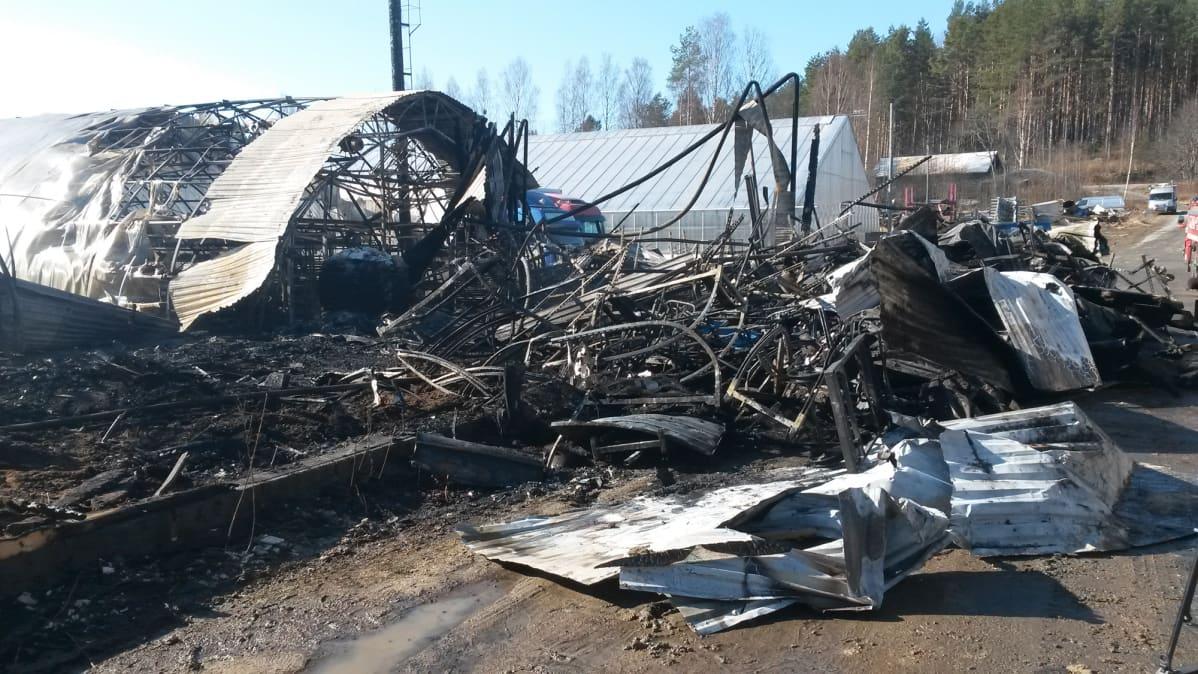 Tulipalossa tuhoutunut konehalli ja kasvihuone.