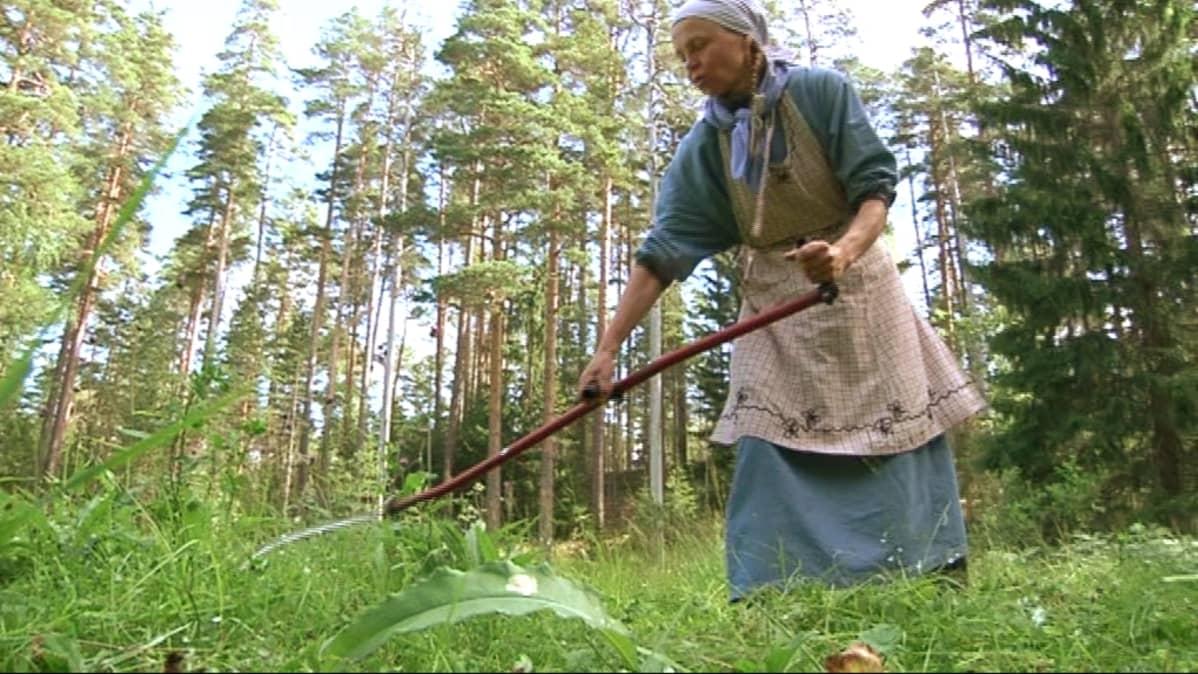 Tilan emäntä niittää viikatteella heinää