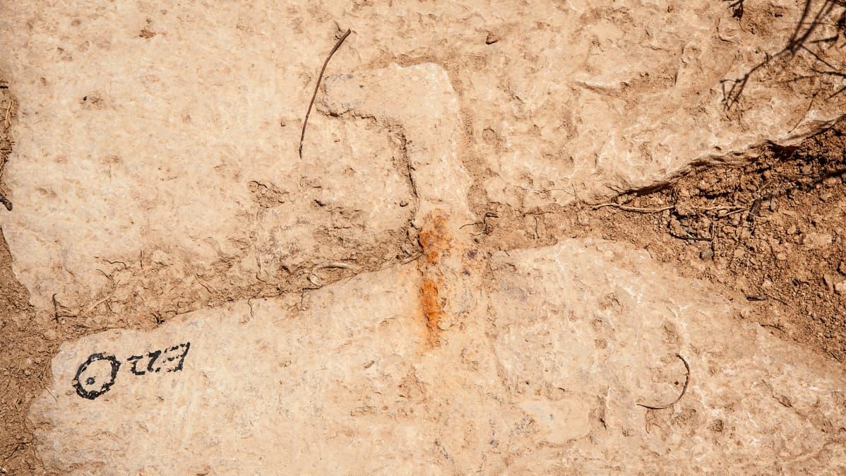 Kaivaus. Salamiin antiikin kaupunginmuurin tornissa on nähtävillä rautakiinnikkeitä 500-luvulta eaa.