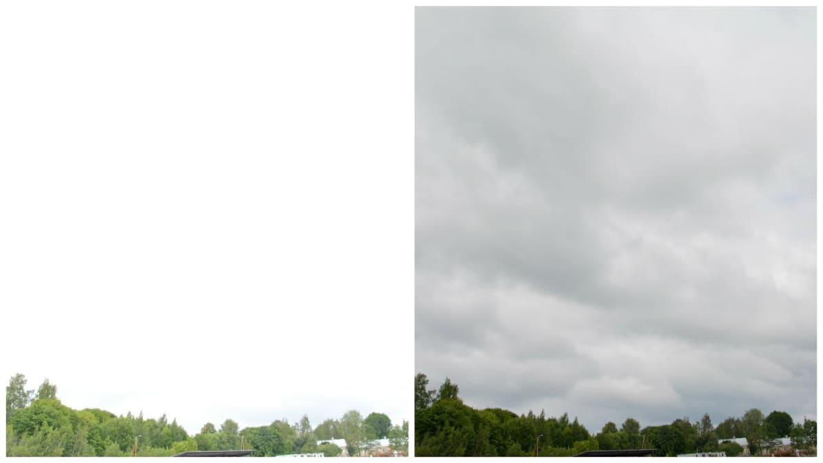 puiden latvoja ja pilviä