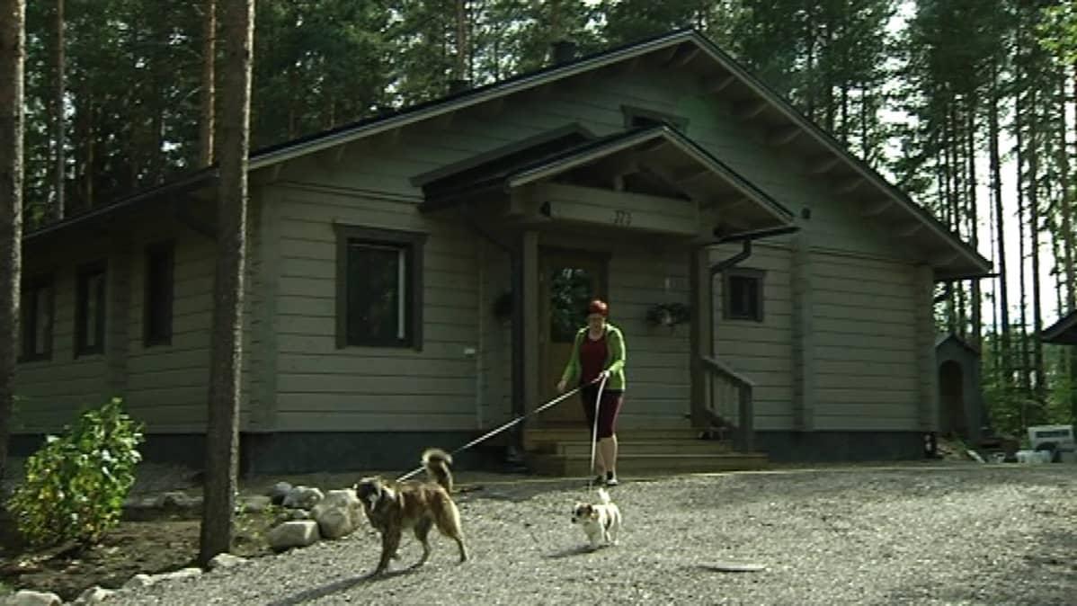 Vikströmien talo sijaitsee jylhän metsän siimeksessä.