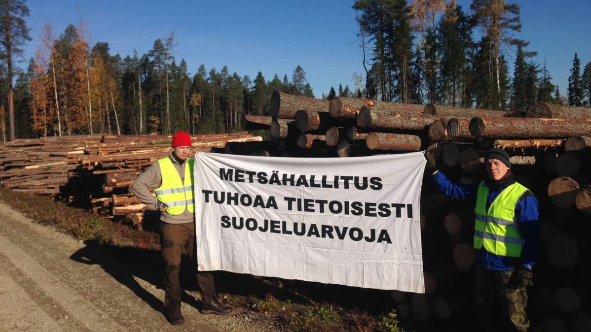 Luonto-Liiton hakkuita vastustava metsäryhmä.