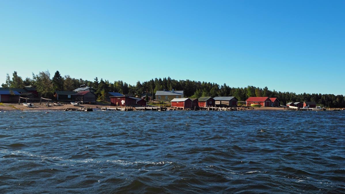 Syyskuinen Tammion saari
