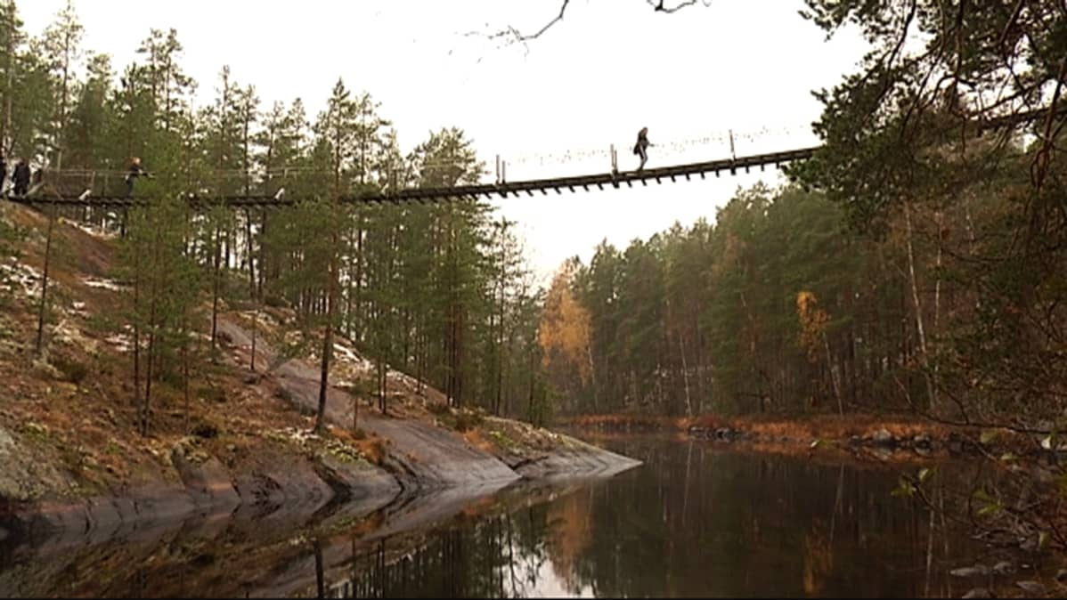 Lapinsalmen riippusilta Repoveden kansallispuistossa