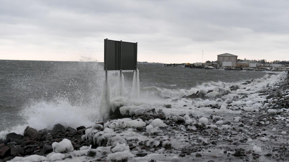 Myrskytuulta Helsingissä 12. tammikuuta 2017.