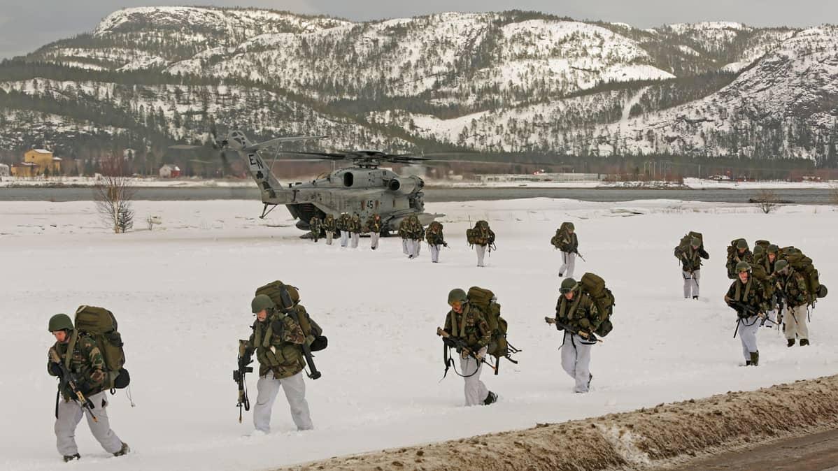Norjan, Yhdysvaltain, Hollannin ja Iso-Britannian joukot osallistuivat NATO:n sotaharjoitukseen Norjassa 3. maaliskuuta 2016.