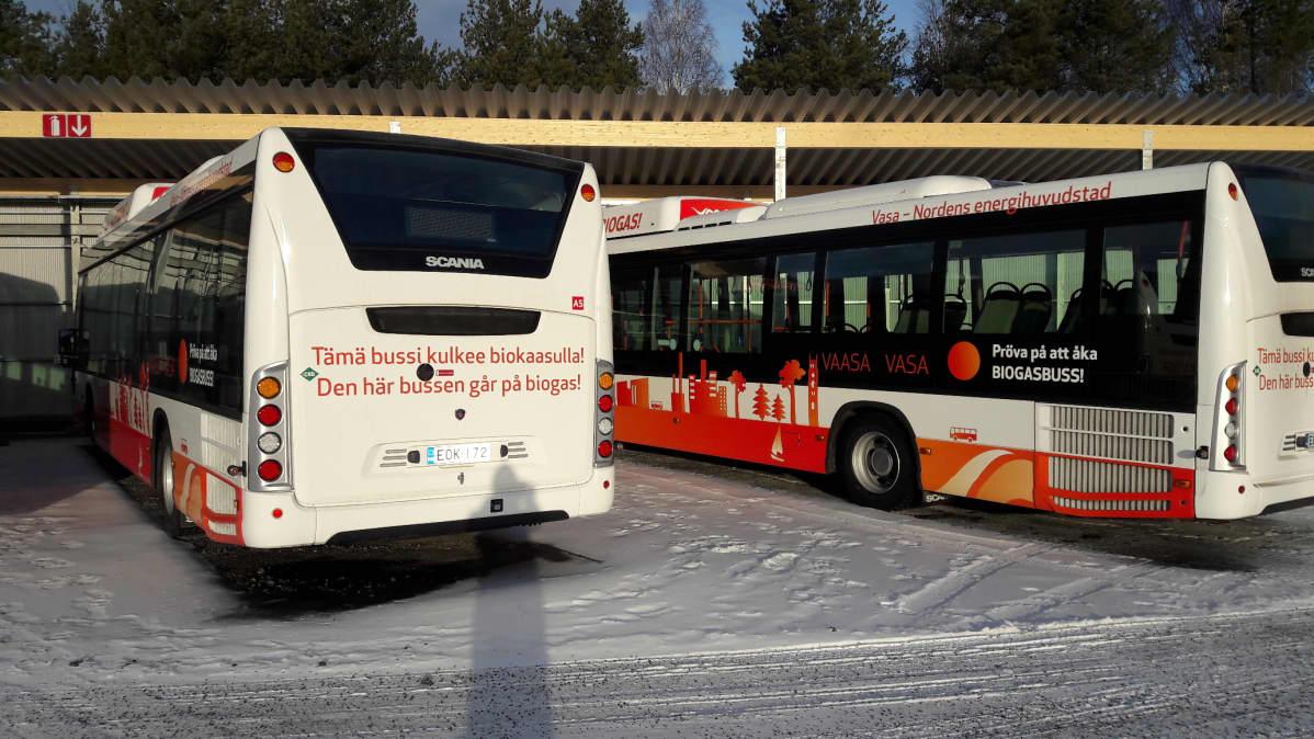 Vaasan paikallisliikenteeseen tulevat biobussit tankkausterminaalissa