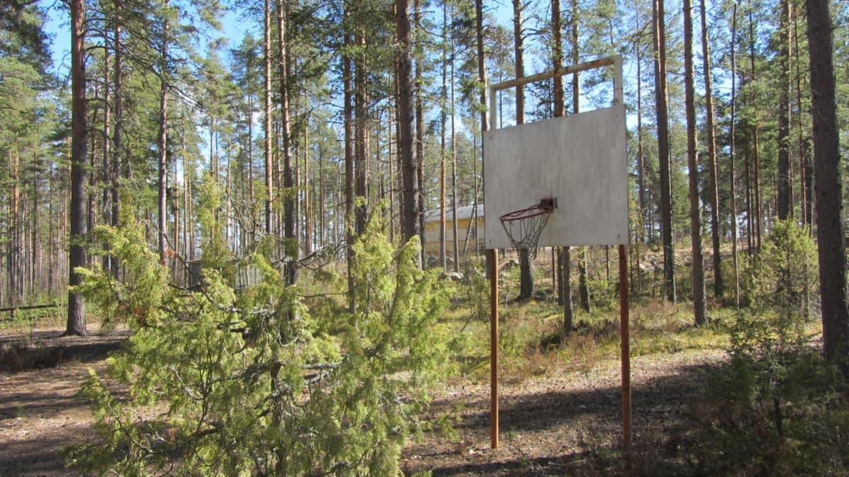 rikkoutunut koripalloteline