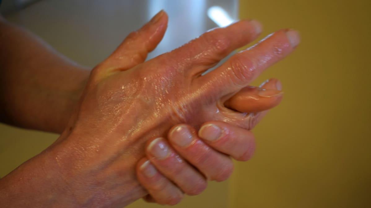 Kaksi painallusta käsidesiä ja 30 sekuntia aineen hierontaa, niin pöpöt pysyvät kurissa.