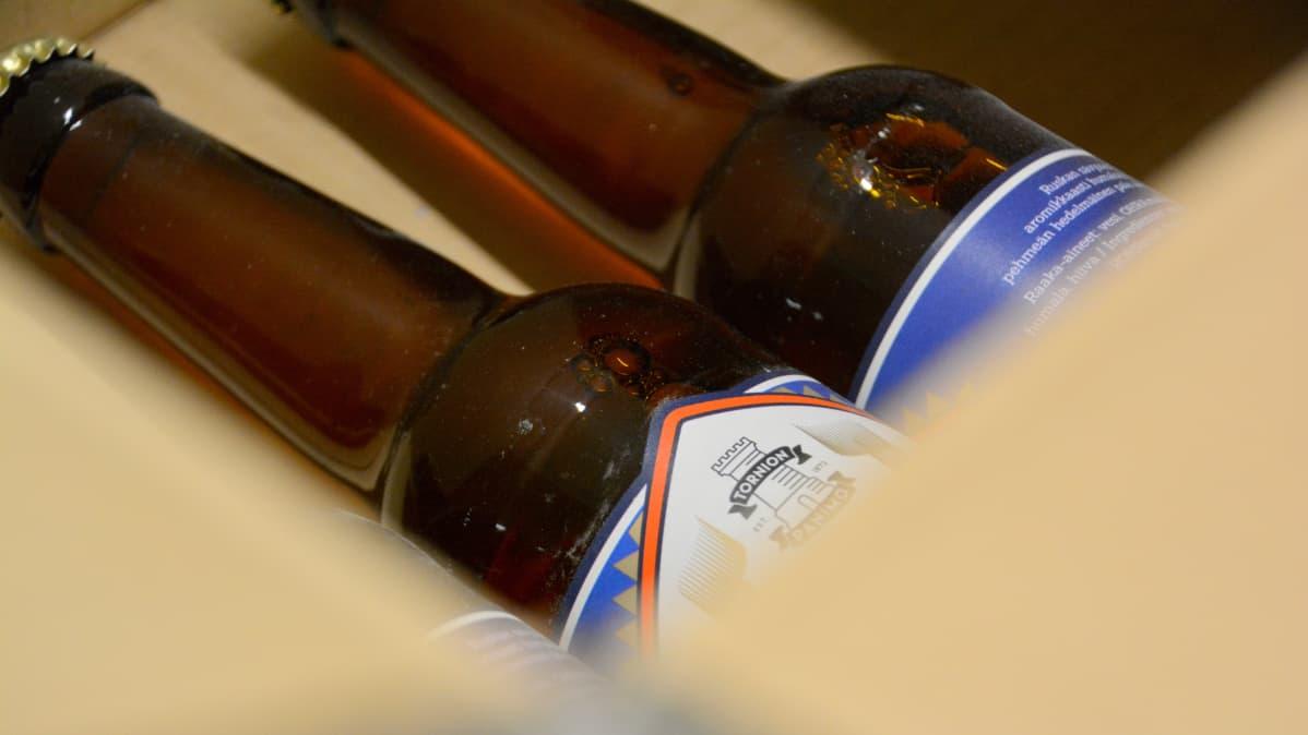 Tornion panimon olutpulloja laatikossa.