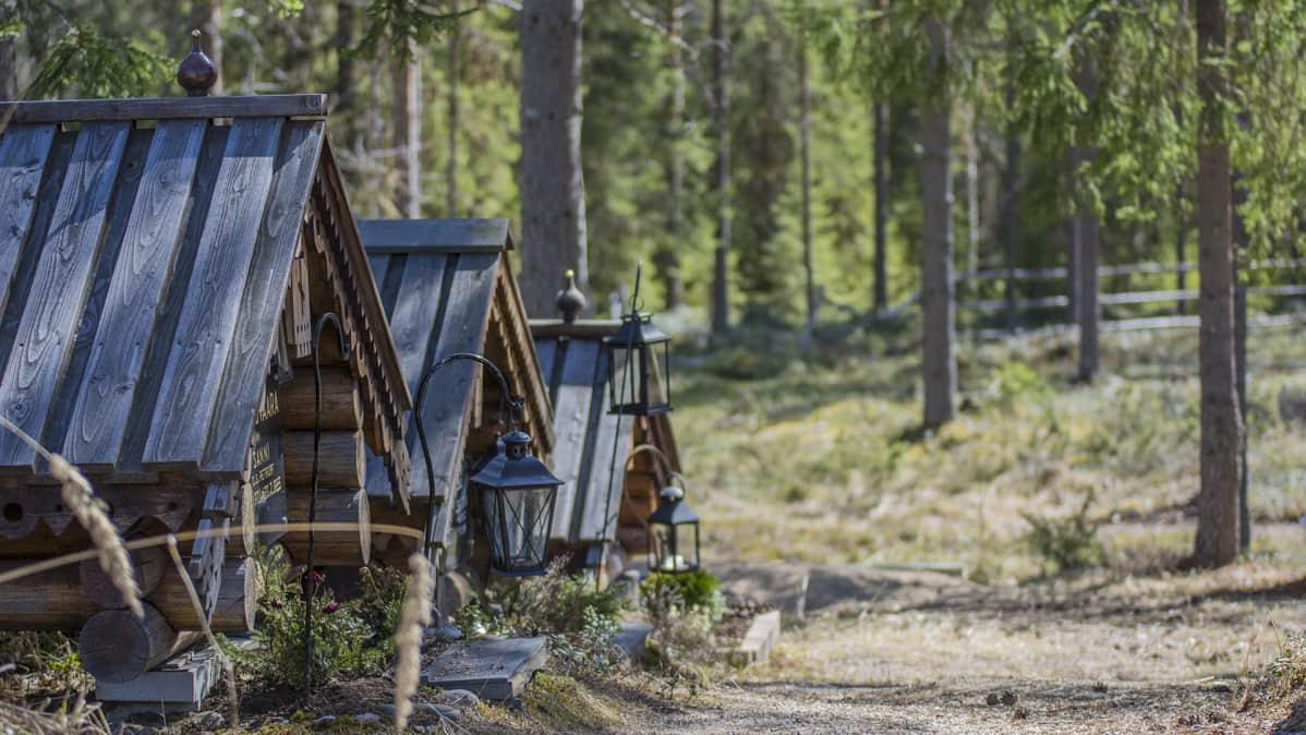 Hirsimökkejä eli grobuja Kajaanin ortodoksisella hautausmaalla.