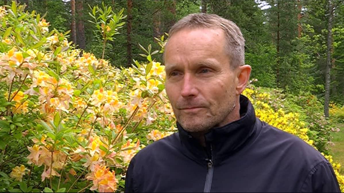 Mustilan arboretumin toiminnanjohtaja Jukka Reinikainen seisoo atsaleapensaan edessä.