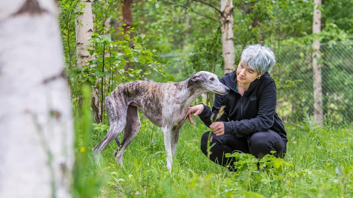 Lupita-galgo ja Katariina Aihos koirapuistossa Sotkamossa.