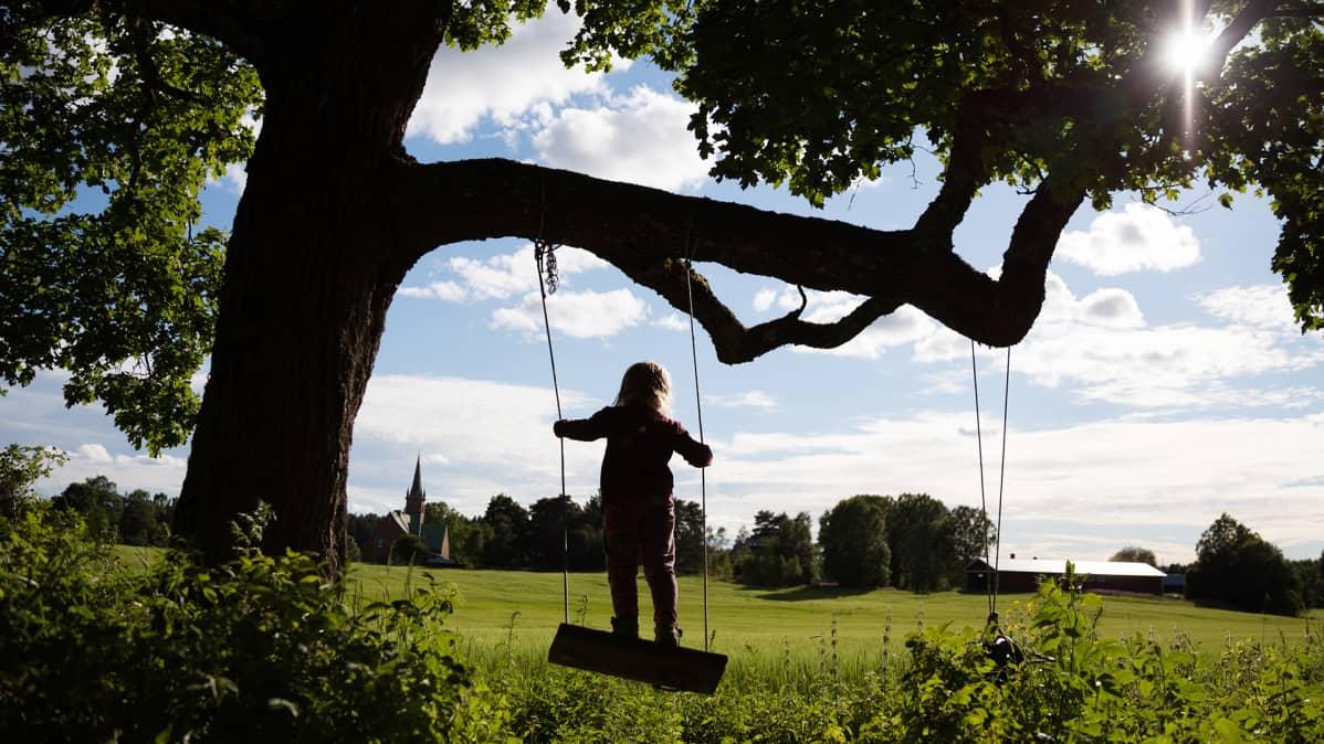 Lapsi keinuu puussa peltomaisemassa.