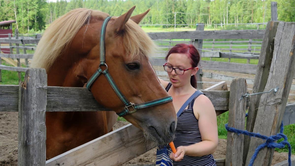Liina Koskinen syöttää Veeran Turolle porkkanoita