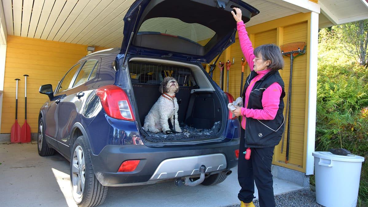 """Nainen """"pakkaa"""" koiran auton takakonttiin"""