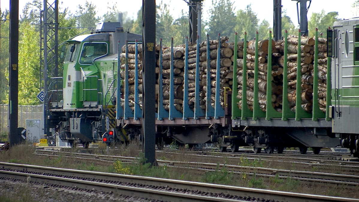 Tavarajuna kuljettaa puutavaraa
