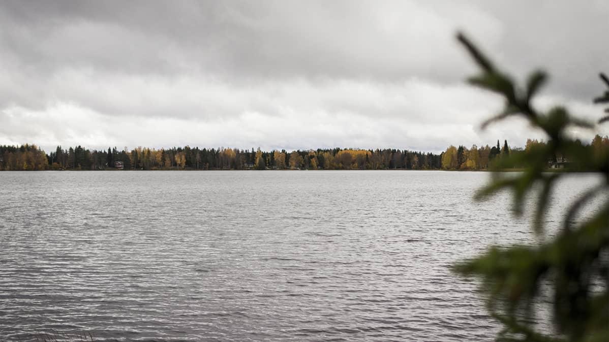 Jäälinjärven ulappaa Oulun Jäälissä.