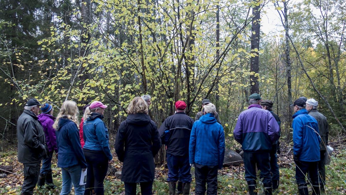 Ryhmä ihmisiä syksyisessä metsässä