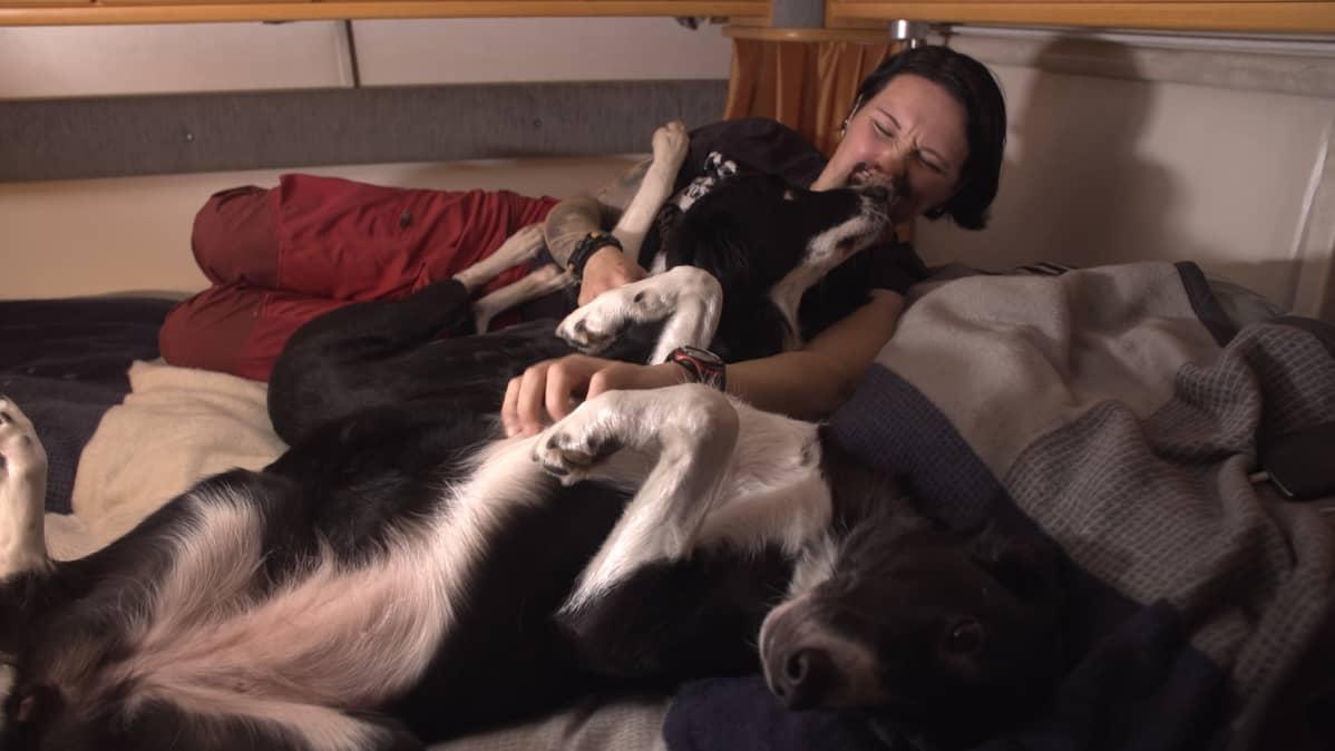 Tanja ja koirat makoilevat sängyssä.