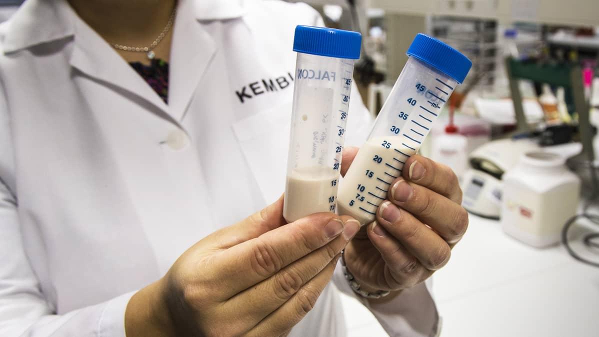 Kuusiemulsio on vaniljakastikkeen värinen, mietotuoksuinen tuote.