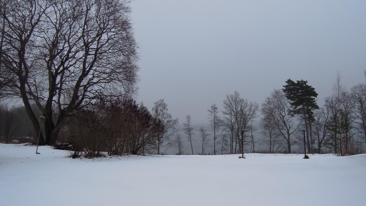 Pipola sijaitsee luonnonkauniilla paikalla Puujärven rannalla.