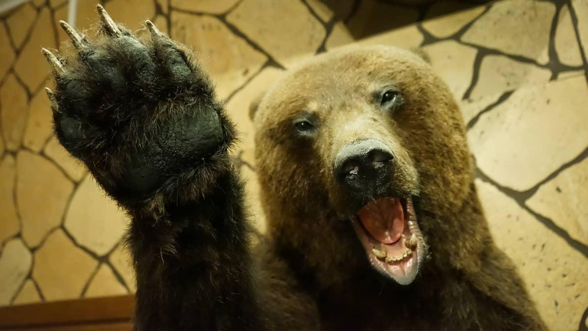 täytetty karhu