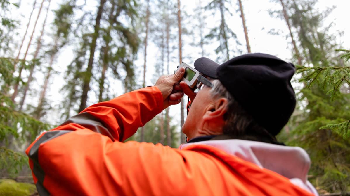 Luonnonvarakeskuksen tutkimusmestari Erkki Piiroinen mittaa laitteella puun korkeutta metsässä.