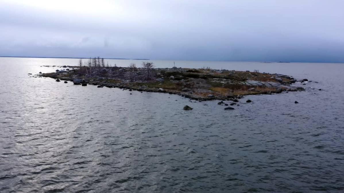 Ilmakuva tyhjästä merimetsojen pesimäsaaresta.