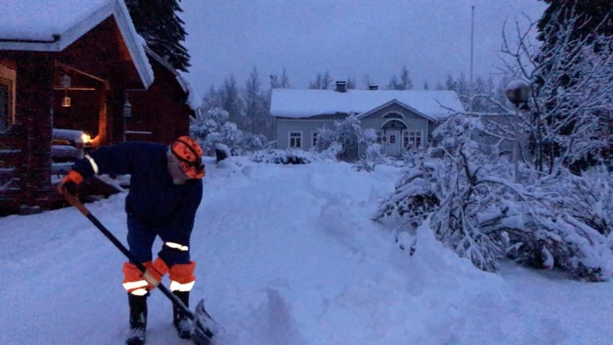 Mies luo lunta pihamaalla aamuhämärissä