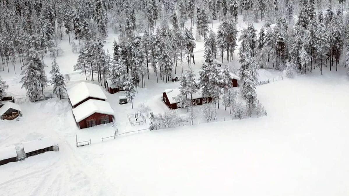 Sattasjokivarsi Sodankylässä Sattasen ja Rajalan välillä