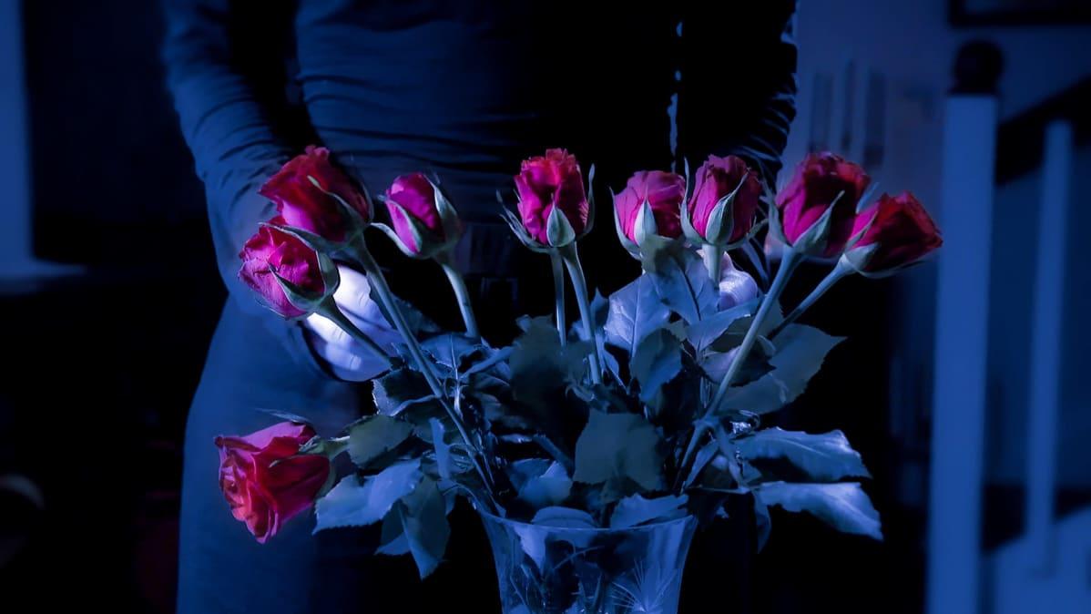 Iso kimppu punaisia ruusuja maljakossa. Taustalla naisen hahmo.