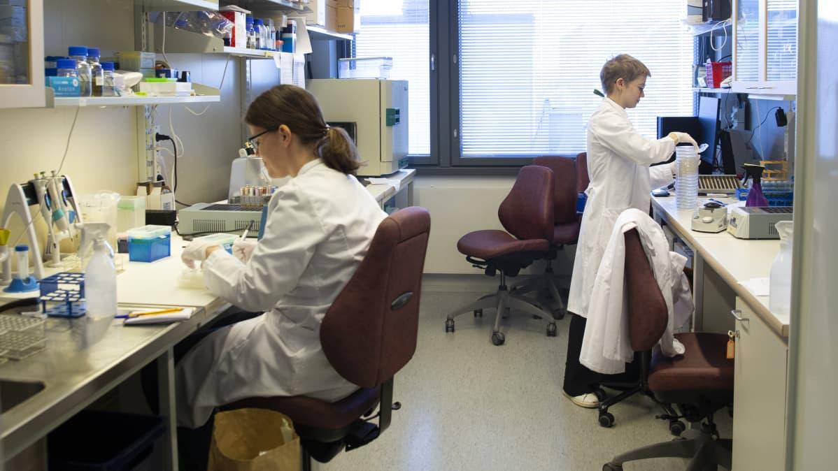 Annette Asplund ja Henni Tuomala tutkivat laboratoriossa bakteriofageja.