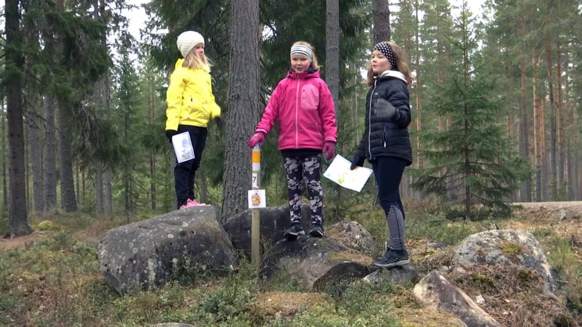 Kolme tyttöä seisoo suunnistuskarttojen kanssa metsässä