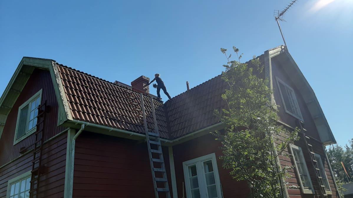 Nuohooja työskentelee piipun vieressä katolla.
